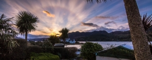 beautiful palm trees at Plockton on Scotlands west coast thanks Ally Deans for pic