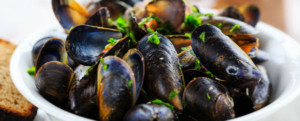 A plate of mussels in Oban
