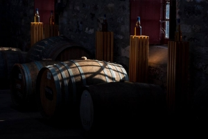 replacement whisky home page